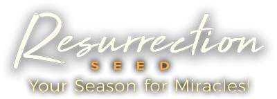 Resurrection Seed - Your Season for Miracles